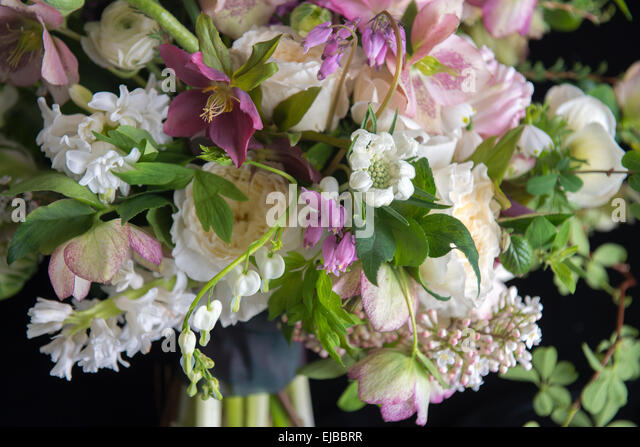 Abundant floral bouquet of spring blooming flowers including ranunculus hellebore parrot tulip tulipa and white - Stock Image