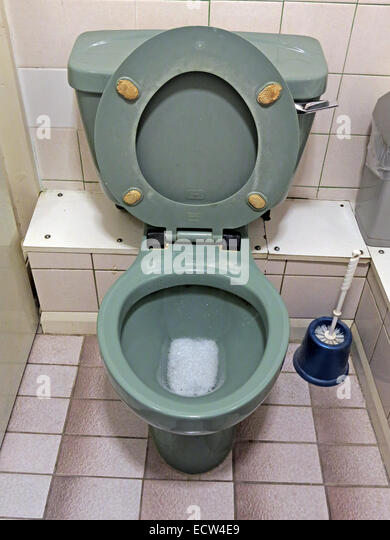 Classic 1970s 1980s green avocado bathroom suite Toilet from England, Great Britain - Stock Image
