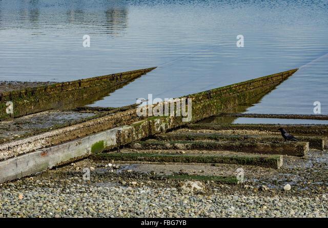 Rail track used to haul boats from the water near the Semiahmoo Resort, Blaine, Washington, USA - Stock Image