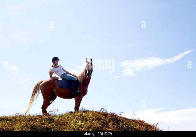 Horse rider on hilltop, Pakiri Beach, Auckland, New Zealand - Stock-Bilder