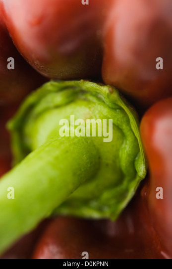 Red pepper close up - Stock Image