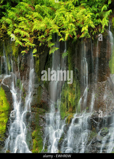 Panther Creek Falls. Washington - Stock Image