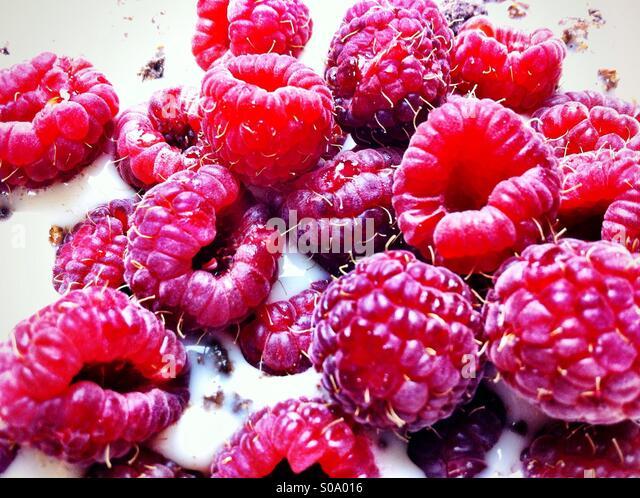Raspberries in soy milk - Stock-Bilder