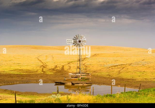 Wind turbine near Brooks, Alberta, Canada - Stock Image