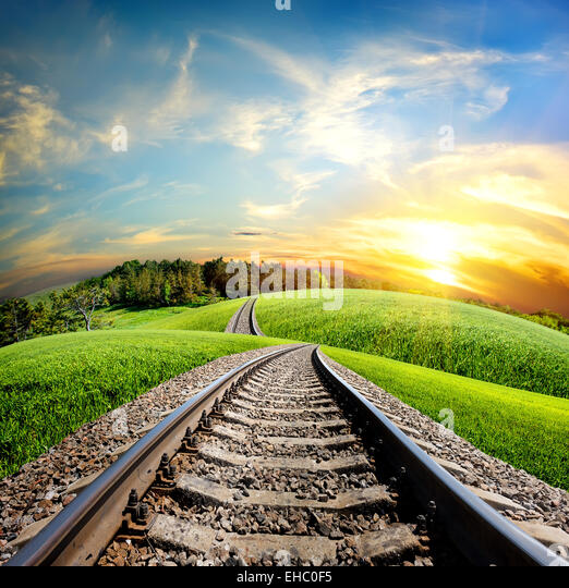 Railroad through the green field and forest - Stock Image