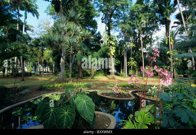 Saint denis reunion stock photos saint denis reunion stock images alamy - Ikea estanteria jardin saint denis ...