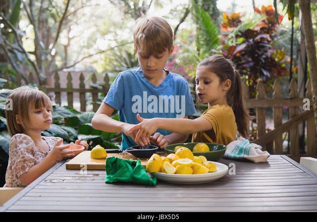 Boy and two young sisters preparing lemon juice for lemonade at garden table - Stock-Bilder