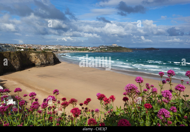 Great Western beach,  Newquay, Cornwall, England - Stock Image