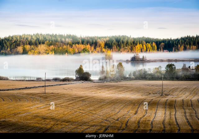 Landscape with fall colors and lake at autumn morning in Finland - Stock Image