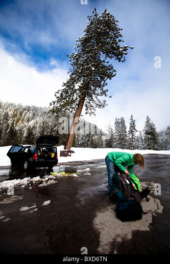 A woman unpacks a car in preparation for a hike in Sequoia National Park, California. - Stock Image