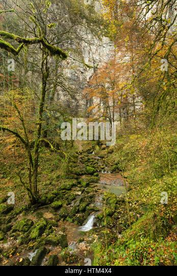 Autumn colours, Bief du Sarrazin, Gorge du Lison, Nans-Sous-Sainte-Anne, Franche-Comté, France - Stock-Bilder