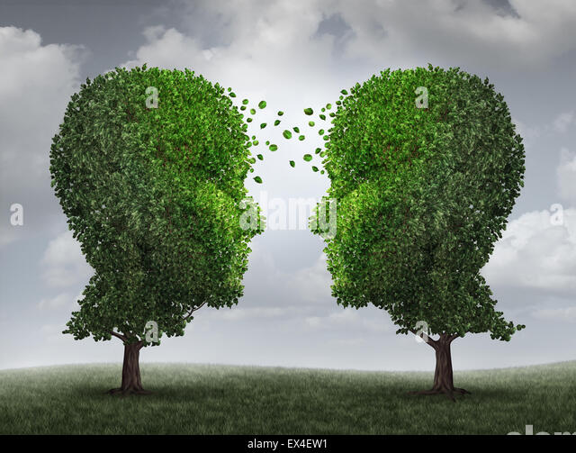 Communication and growth concept as a growing partnership and teamwork exchange in business with two trees in the - Stock Image