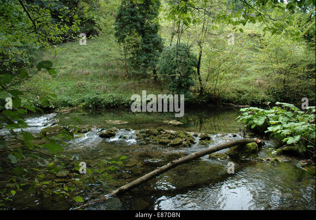Millers Dale in Derbyshire by River Wye - Stock Image