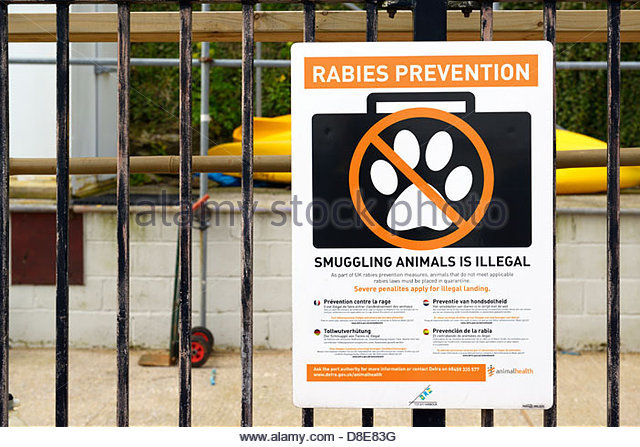 Rabies prevention notice, Brixham, Devon, England UK - Stock Image