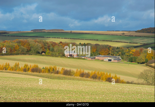 Garden Landscaping East Yorkshire : East riding yorkshire stock photos images alamy