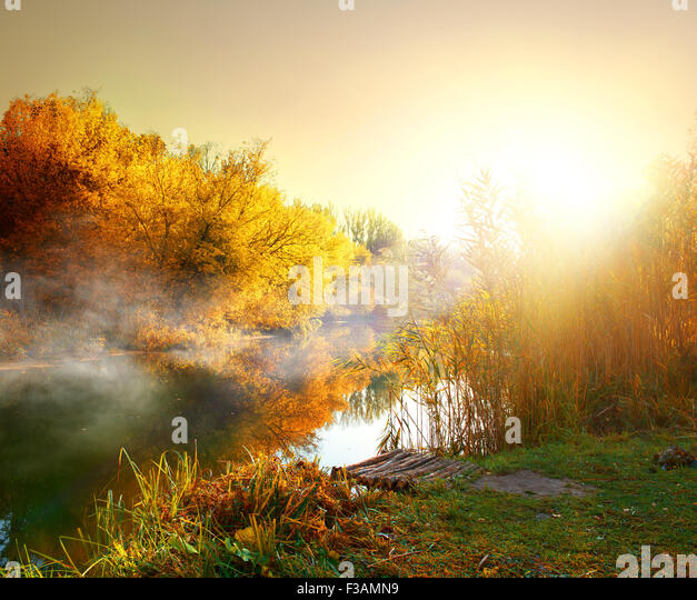 Fog over river in forest in the autumn - Stock Image