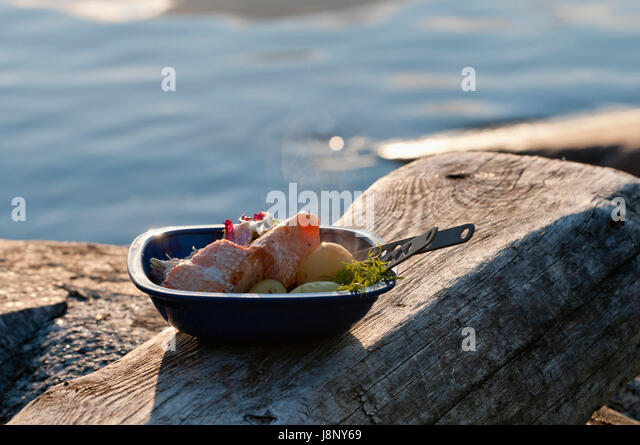 Meat and vegetables in metal bowl on piece of wood by sea - Stock-Bilder