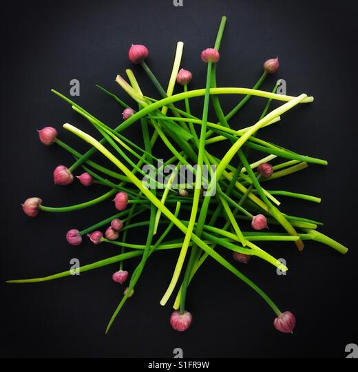 A pile of fresh chives. - Stock Image