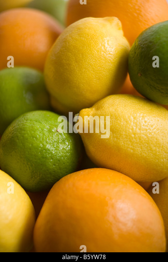 Selection Of Citrus Fruits - Stock Image