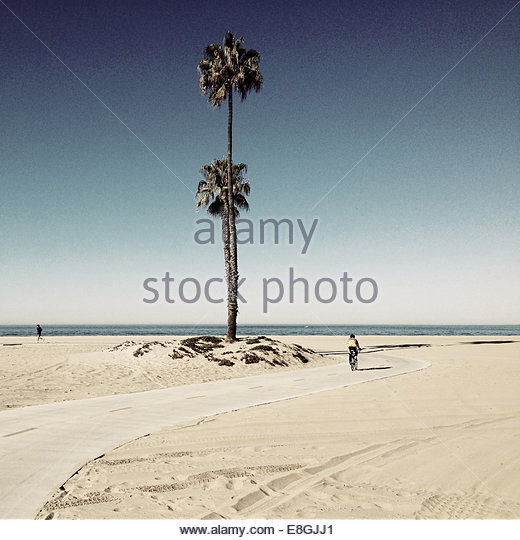 Rear view of man cycling and man running on beach, Santa Ana, California, America, USA - Stock Image