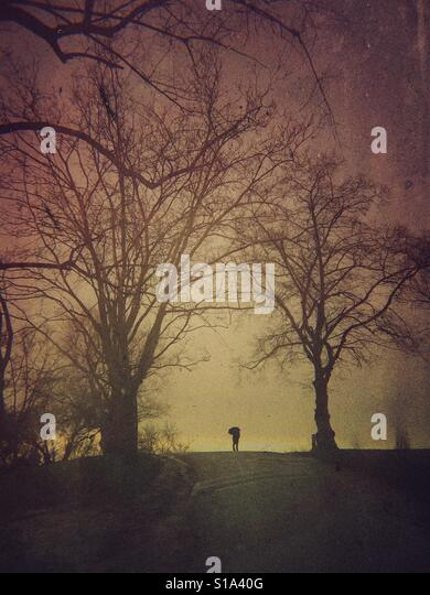 Man with umbrella on Hampstead Heath - Stock-Bilder