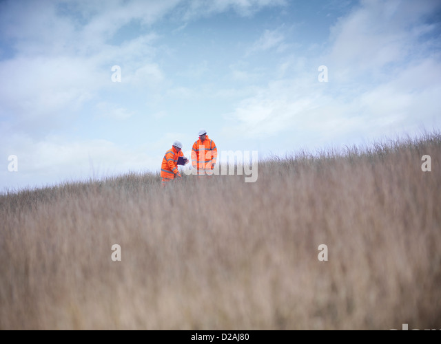 Ecologists examining tall grass - Stock Image