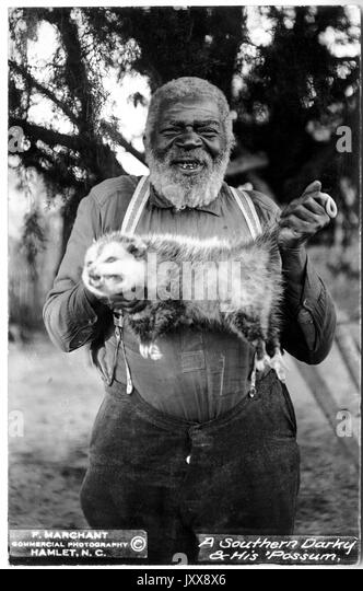 A smiling mature African American man stands outdoors in a wooded area, holding up a dead possum, 1915. - Stock Image