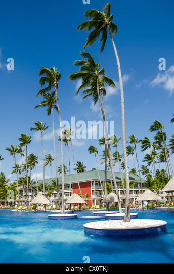 Swimming pool with tall palm trees planted in water with thatch shade huts beside pool, Bavaro Punta Cana, Dominican - Stock Image