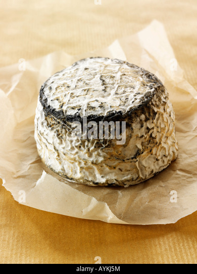 French farmers cinder goat cheese on a white background.  Normandy - Stock Image