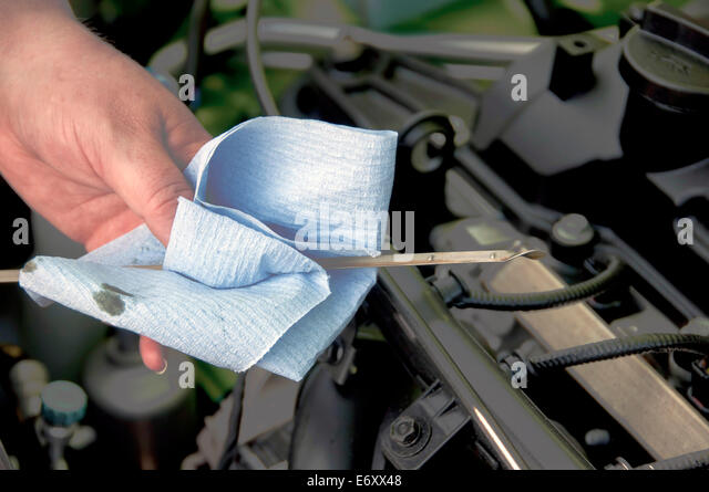 Motor vehicle inspection stock photos motor vehicle for Abc motor credit inventory
