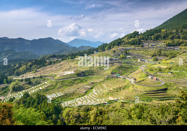 Rice terraces at Maruyama Senmaida in Kumano, Mie Prefecture, Japan. - Stock Image