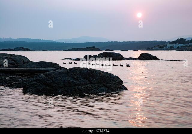 Sunset at Saxe Point Park - Esquimalt, Victoria, Vancouver Island, British Columbia, Canada - Stock Image