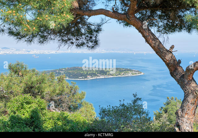 Aerial view of Sedef Island (Mother of Pearl Island) framed by green trees from Buyukada island. Both are neighbourhoods - Stock Image
