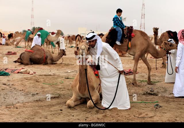 A Qatari embraces his camel at a camp in Doha, Qatar, - Stock Image