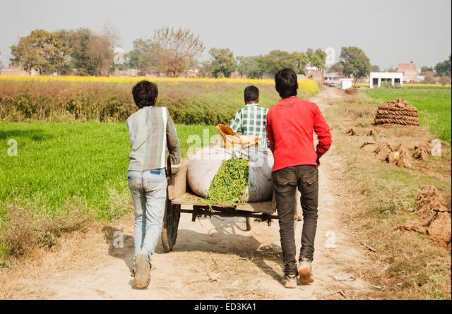 3 indian rural farmer Seasoning Cart - Stock Image