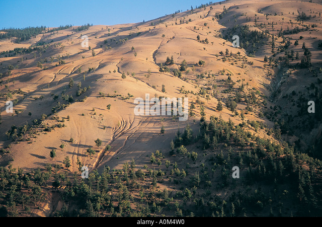 Deforestation and resulting erosion, Adana Turkey - Stock Image