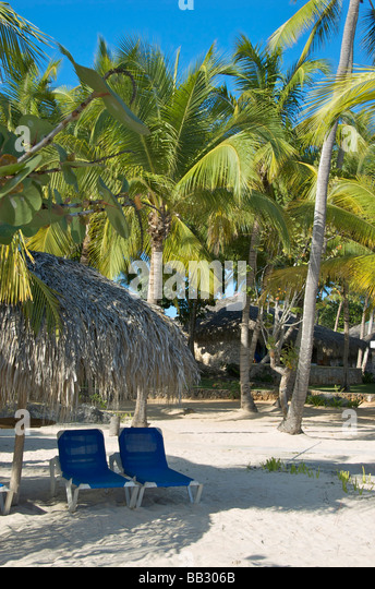 Dominican Republic, Bayahibe, Viva Wyndham Dominicus Beach, beach chairs - Stock Image