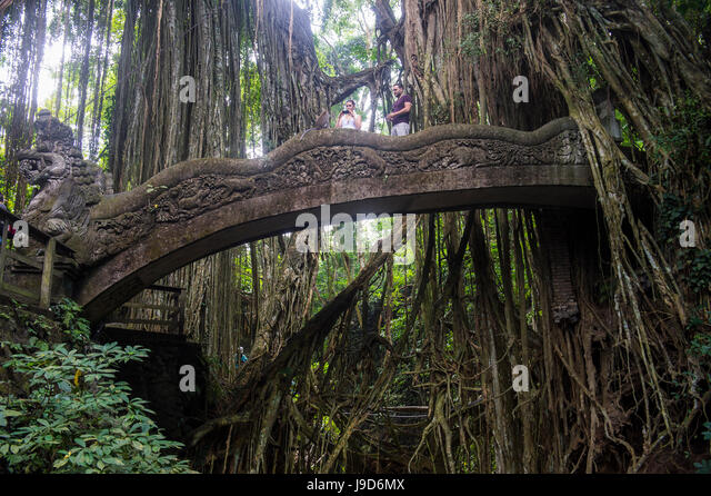 Very beautiful carved bridge with overgrowing trees, Sacred Monkey Forest Sanctuary, Ubud, Bali, Indonesia, Southeast - Stock-Bilder