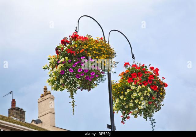 Municipal Hanging Flower Baskets : Hanging baskets stock photos