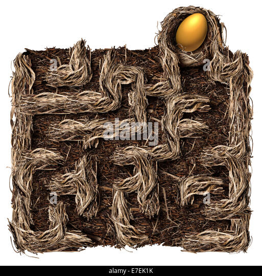 Retirement savings strategy nest egg symbol as a financial planning business concept with a bird nest shaped as - Stock-Bilder