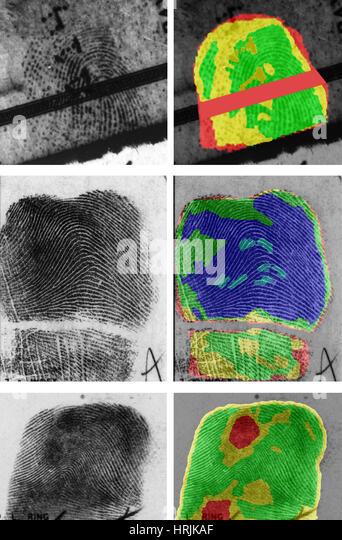Fingerprints, Forensics, 2013 - Stock Image