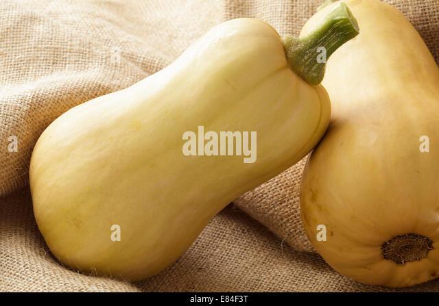 Butternut Squash - Stock Image