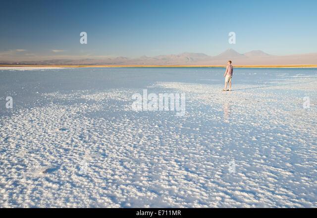 Man enjoying view, Laguna Salada, Salar de Atacama, El Norte Grande, Chile - Stock Image