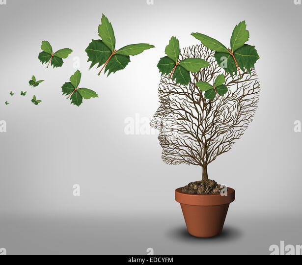 Psychology help and solutions to psychiatric problems and mental health as a learning concept with an empty tree - Stock Image