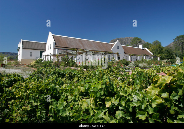 south africa wine region Suider Paarl Avondale wine  - Stock Image
