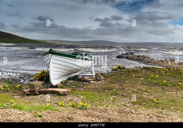 Green and white rowing boat on shore of a stormy Scottish Loch, Orkney UK - Stock Image