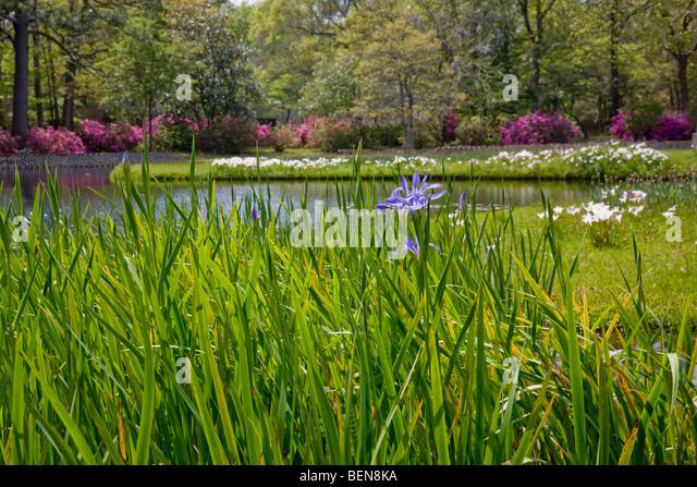 Brookgreen gardens stock photos brookgreen gardens stock images alamy for Brookgreen gardens south carolina
