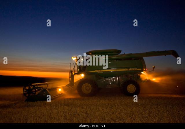 A John Deere combine harvests Soft White wheat on rolling hillside terrain at dusk / Palouse Region, near Pullman, - Stock Image