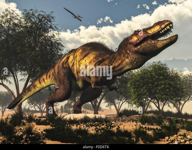 Tyrannosaurus Canyon Tyrannosaurus Rex Artw...