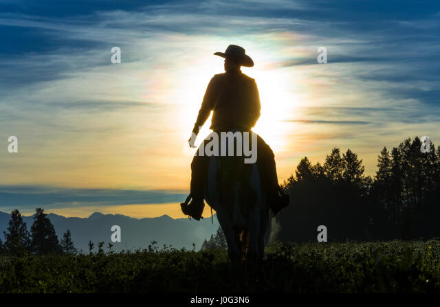 Cowboy riding across grassland with mountains behind, early morning, British Colombia, Canada - Stock Image